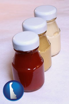 ketchup, mustard, and mayonnaise condiments - with Delaware icon