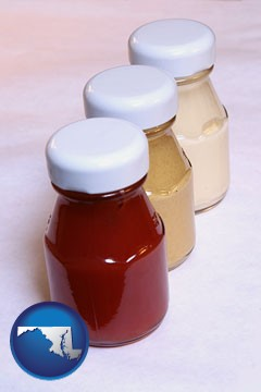 ketchup, mustard, and mayonnaise condiments - with Maryland icon