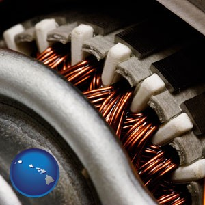 electric motor internals - with Hawaii icon