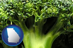 georgia fresh broccoli