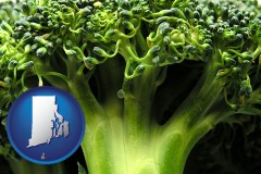 rhode-island fresh broccoli