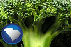 south-carolina fresh broccoli