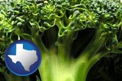 texas fresh broccoli