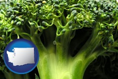 washington fresh broccoli
