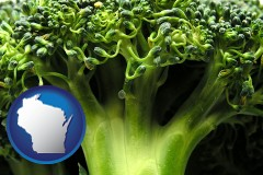 wisconsin fresh broccoli
