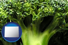 wyoming fresh broccoli