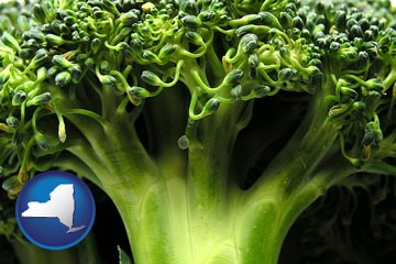 fresh broccoli - with New York icon