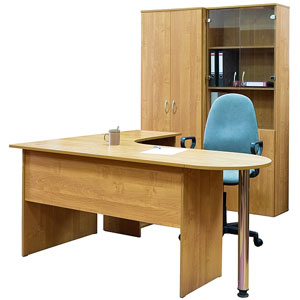 office furniture (a desk, chair, bookcase, and cabinet)