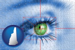 new-hampshire an iris-scanning security system