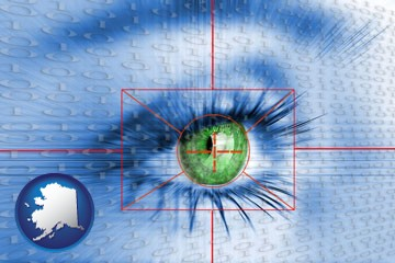 an iris-scanning security system - with Alaska icon