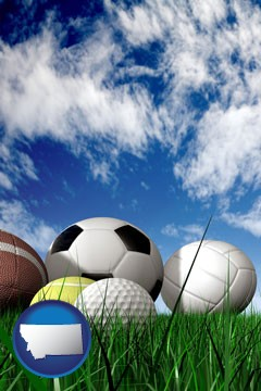 a football, a golf ball, a soccer ball, a tennis ball, and a volleyball - with Montana icon