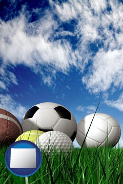a football, a golf ball, a soccer ball, a tennis ball, and a volleyball - with Wyoming icon